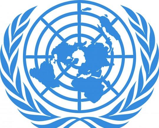 ONU-2-e1457958911503-540x436
